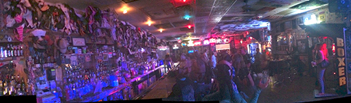 Hogs & Heifers Panorama